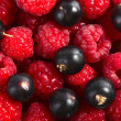 Berry — Stock Photo #8157120