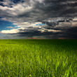 Storm over meadow — Stock Photo #8157151