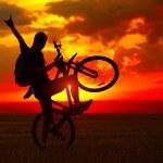Biker — Stock Photo #8157182