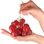 Kiść winogron w ręce — Zdjęcie stockowe