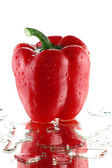 Red sweet papper — Stock Photo