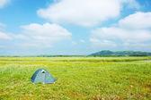 çadır — Stok fotoğraf