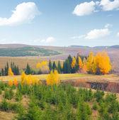 Autumn — Photo