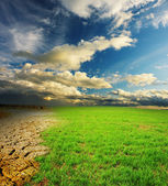 Green grass and cracked desert land over dramatic clouds — Stock Photo