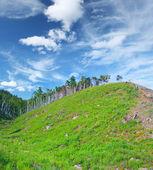 Hill — Stock Photo