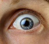 Eye macro shoot — Stock Photo
