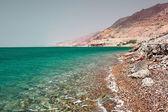 Dead sea — Stock Photo