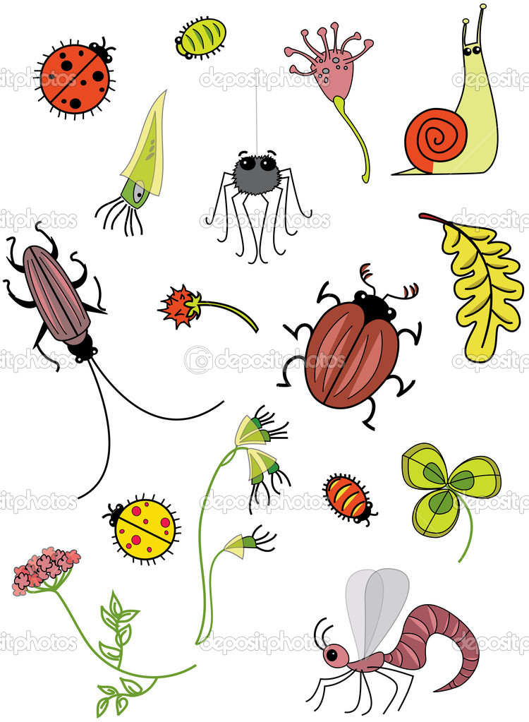 Insects. Rasterized copy — Stock Photo #8150179
