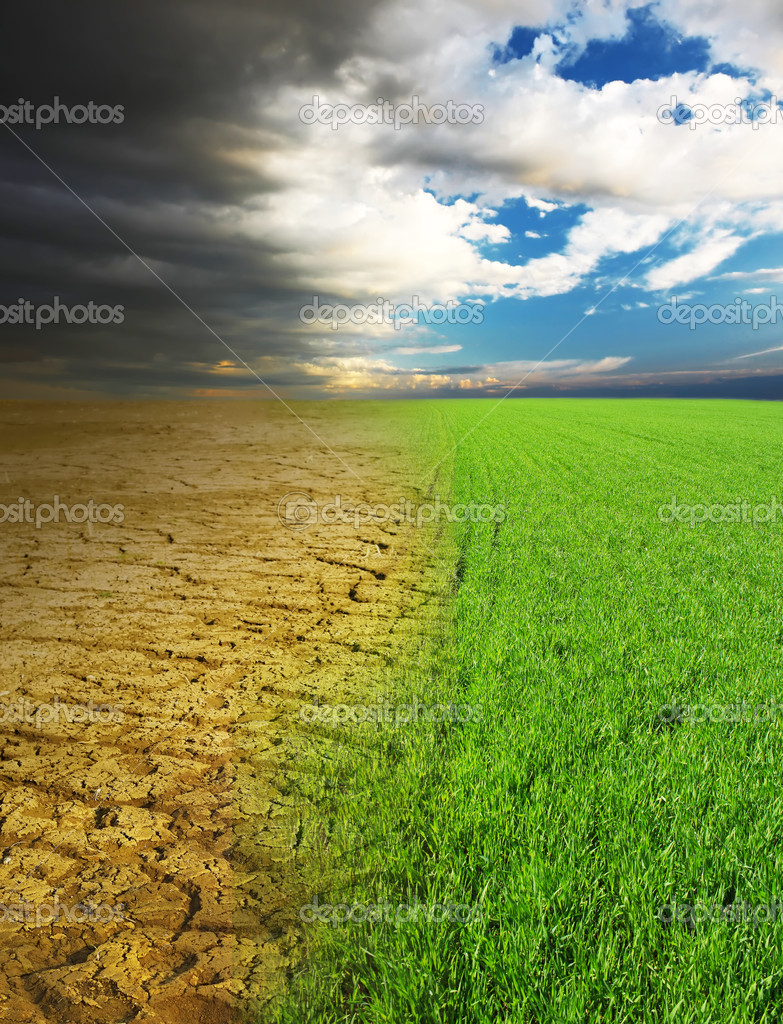 Dry desert and green fresh grass — Stock Photo #8150558