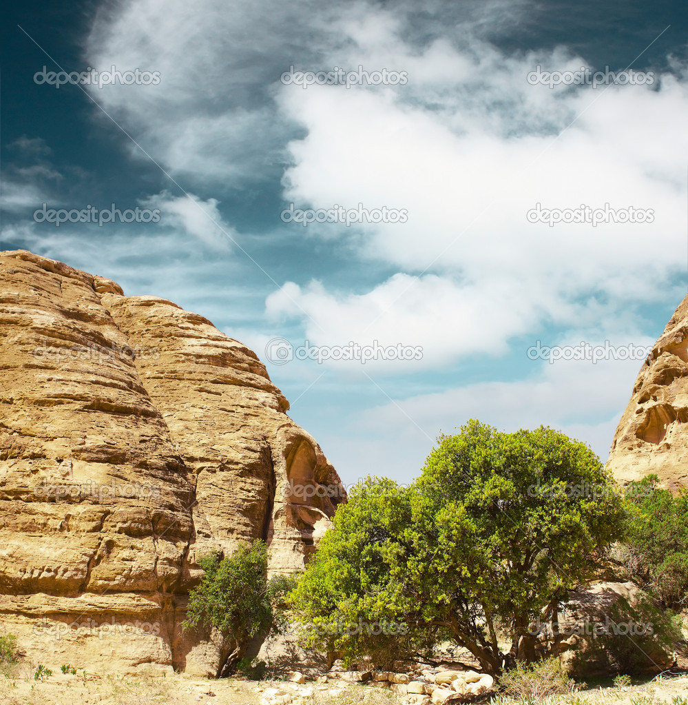 Trees between rocks and blue sky with clouds — Stock Photo #8157826