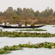 Stock Photo: Bozo fishermen outside Bamako, Mali