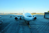 TAP airplane in Lisbon airport — Stock Photo