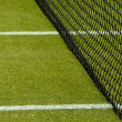 Stock Photo: Lawn tennis court