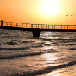Sunset, Bridge on the sea shore, a flock of birds flying away — Stock Photo