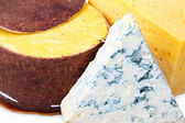 Cheese in the range of close up — Foto Stock