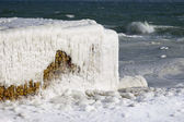 Black sea coast covered with ice in a cloudy day — Stock fotografie