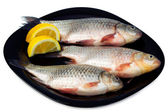 Fresh fish - bream with lemon wedges on a black plate — Stock Photo