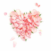 Heart from the most gentle rose-petals — Stock Photo