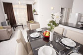Luxury apartment interior design — ストック写真