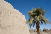 Egyptian hieroglyphic carvings on a temple wall — Stock Photo