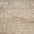 Hieroglyphic carvings on an ancient egyptian temple wall — Stock Photo #8764617
