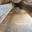 Columns in an ancient egyptian temple - Photo