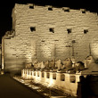 Karnak temple in Luxor at night - Photo