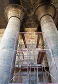 Columns in an ancient egyptian temple — Stock Photo