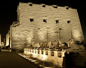 Karnak temple in Luxor at night — Stock fotografie