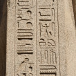 Egyptian hieroglyphics at an ancient temple — Stock Photo #8844802