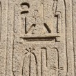 Egyptian hieroglyphics at an ancient temple — Foto de Stock