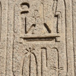 Egyptian hieroglyphics at an ancient temple — Stock fotografie
