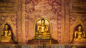 """Phra Sihing Buddha"" Thai gold statues at Phra Singh Temple — Stock Photo"