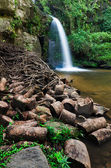 The timber front of beauty of a waterfall — Stock Photo
