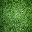 Texture and surface of green turf center light - Stockfoto