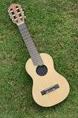 """Guitar LeLe"" on green grass — Stock Photo"