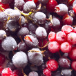 Fresh frozen berries: red and black currant - Stock Photo