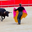 Stock Photo: Bullfighting in nîmes arena