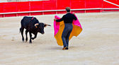 Bullfighting in the nîmes arena — Stock Photo