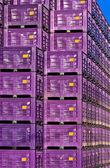 Caja de almacenaje — Foto de Stock
