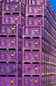 Storage box — Stock Photo