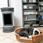 Dog and stove — Stock Photo