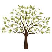 árbol 2 — Vector de stock