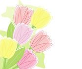 Tulip bouquet — Stock Vector