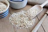 Porridge Oats — Stock Photo