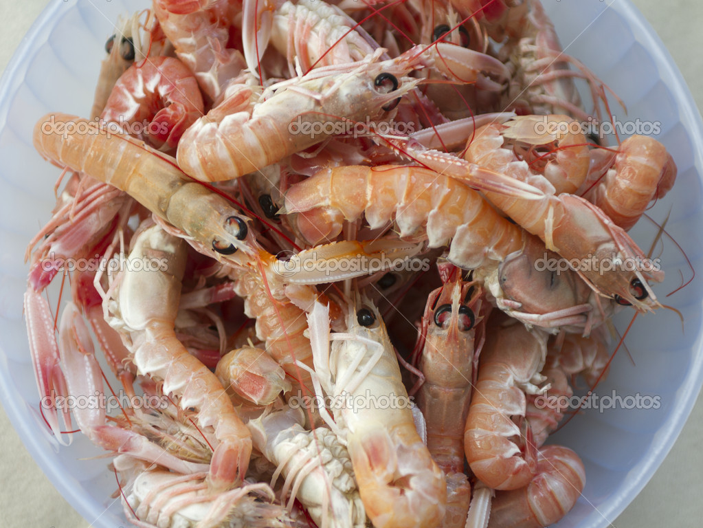 Bunch of fresh Adriatic scampi — Stock Photo #9660950