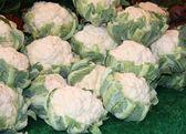 Cauliflower Heads. — Stock Photo