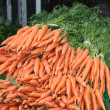 Royalty-Free Stock Photo: Freshly Picked Carrots.