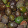 Stock Photo: Avocado Fruits.