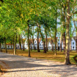Beguinage in bruges, belgium — Stock Photo